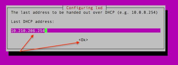 Setup last IP address for the LXD dhcpd