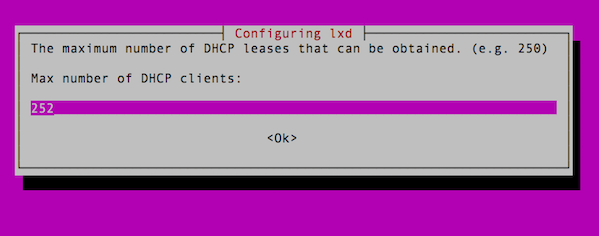 Setup max number of the LXD dhcpd client