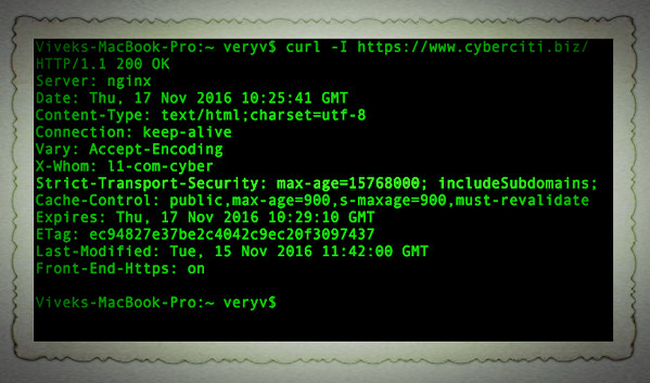 Fig.01: Verify HTTP Strict Transport Security (HSTS) header with curl command