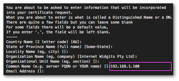 Fig.03: Using the CA key, generate the CA certificate for MariaDB