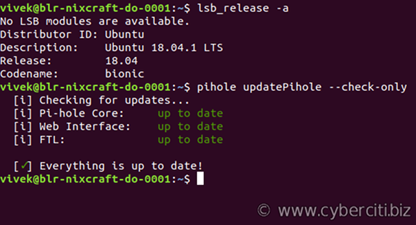 How to update or upgrade Pi-hole with an OpenVPN on Ubuntu or Debian Linux