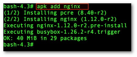 Fig.01: Installing the Nginx web server