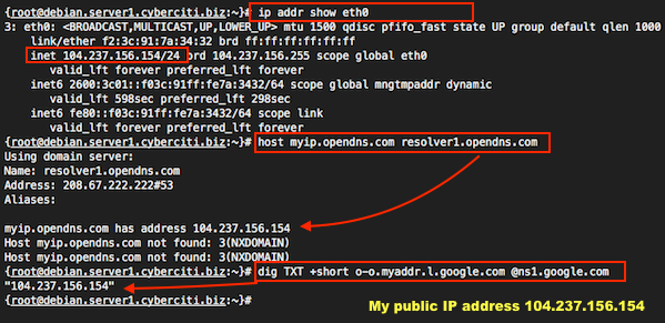 how to know my public ip address in linux
