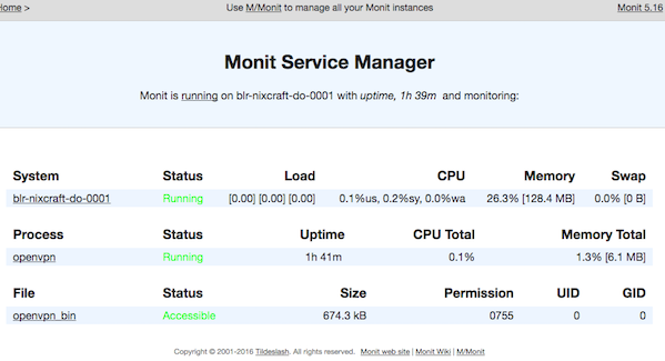 Fig.02: Monit service manager in action