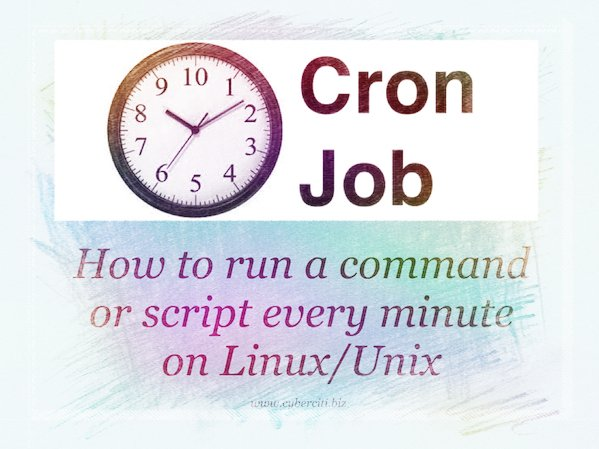 Running crontab to execute script/command every minute