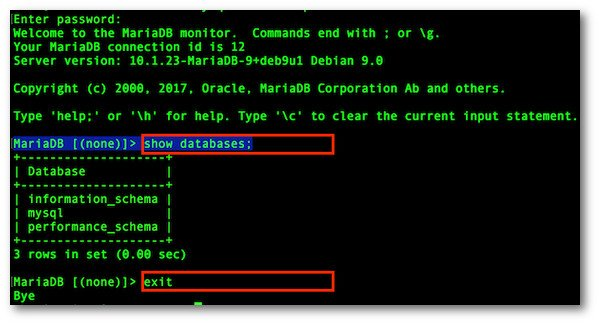 Fig.04: Testing MariaDB/MySQL server installation