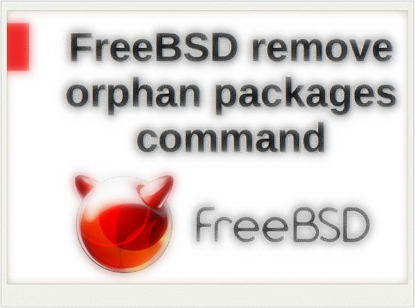 How To Remove Unwanted / Unused Dependencies in FreeBSD pkg Command