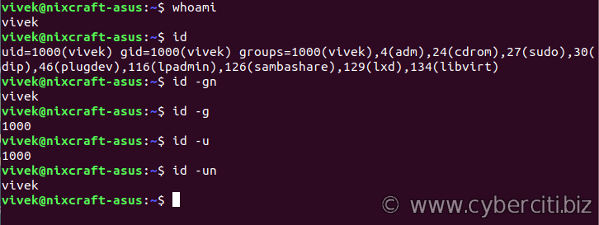 Linux Find Out The Current User Using whoami command