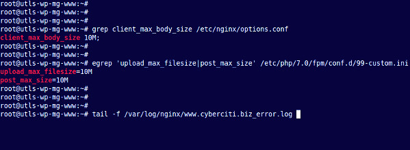 Fix client intended to send too large body: xyz bytes in Nginx