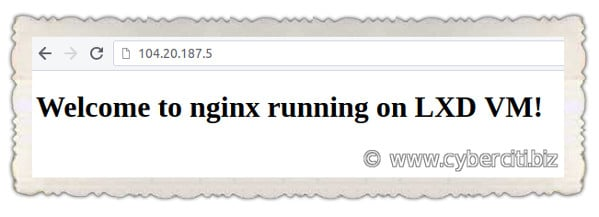FirewallD forwarding Incoming Connections to the Nginx Container VM