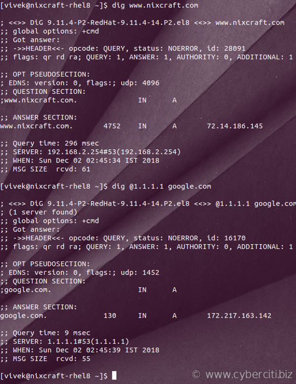dig command installed on an RHEL 8 and displaying dns output of a query