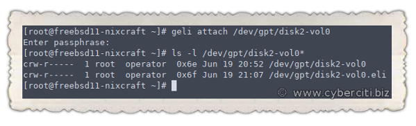 Configure an Encrypted ZFS pool with geli on FreeBSD