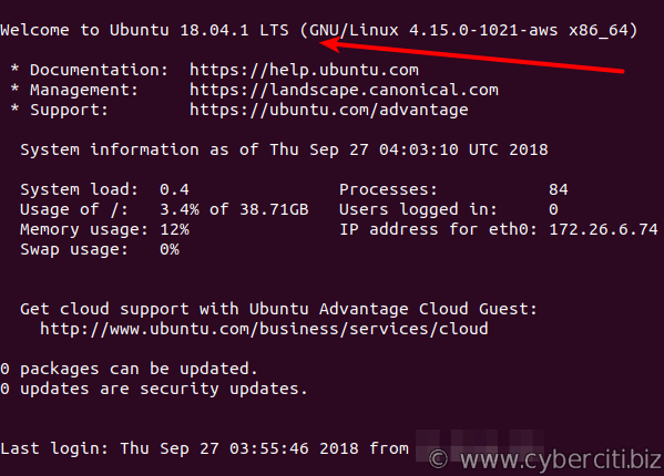 AWS Lightsail upgrade Ubuntu 16.04 LTS to 18.04 LTS upgrade completed