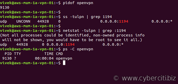 Verify that OpenVPN server runnign and Port is Open on ubuntu Linux
