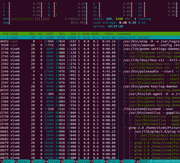 Show number of cores of a system in Linux with htop