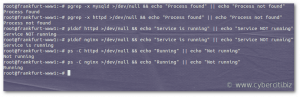 How to check if process is running in linux bash shell