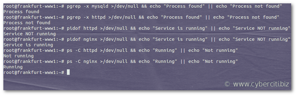 Bash check if process is running or not on Linux / Unix