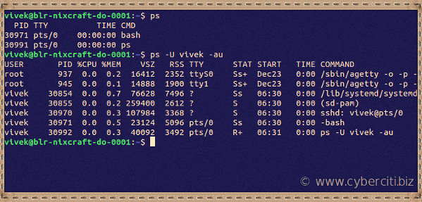 How to check running process in Ubuntu Linux using command line