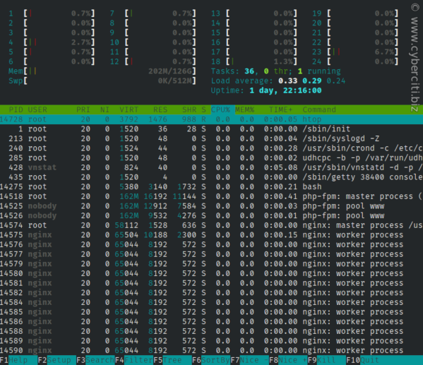 Running htop on an Alpine Linux server