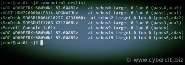 FreeBSD list all physical disk devices and logical units attached