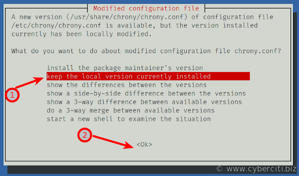 How to upgrade Debian 9 to Debian 10 Buster using the CLI
