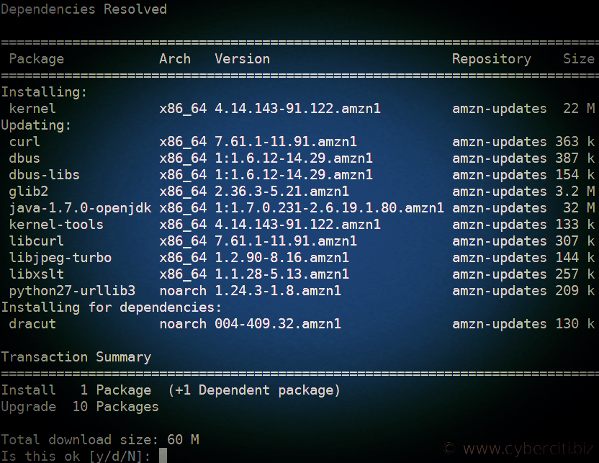 Amazon Linux AMI update installed packages using yum