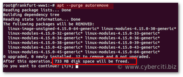 How to Remove Old Kernels in Ubuntu Linux using apt