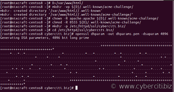 Step 3 and 4 openssl