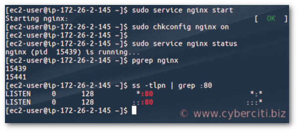 nginx does not start on its own. To get nginx running