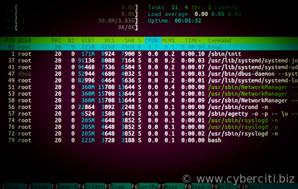 Running htop on CentOS 8 Linux server