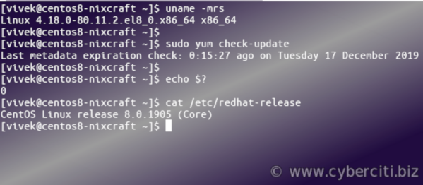 Checking For and Updating Packages on CentOS 8 Linux