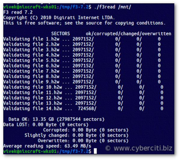 How to test my memory stick in Linux