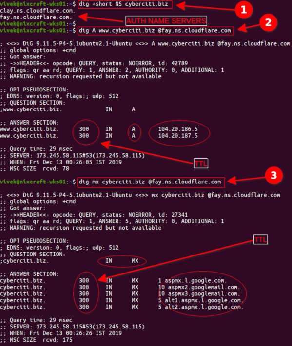 Linux command to find Time-To-Live (TTL) DNS