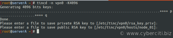 How to generate the public and private keypair for tincd