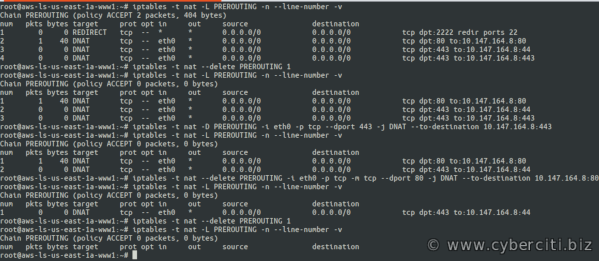 Linux Iptables Delete prerouting Rule command