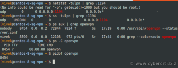 Verify that OpenVPN server running and UDP 1194 port is open