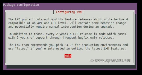Install LXD on Ubuntu 20.04 Linux LTS using apt