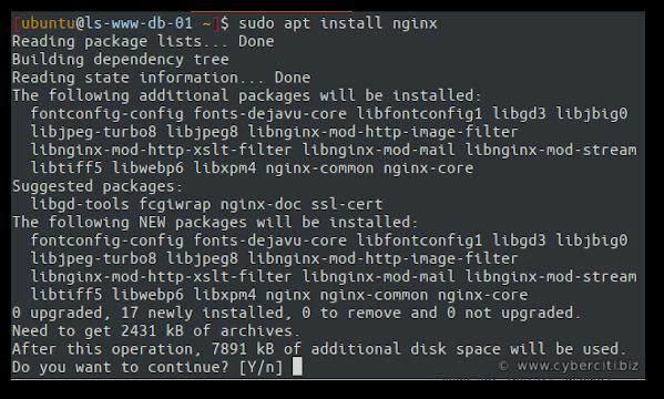 Install Nginx On Ubuntu 20.04 LTS Linux server