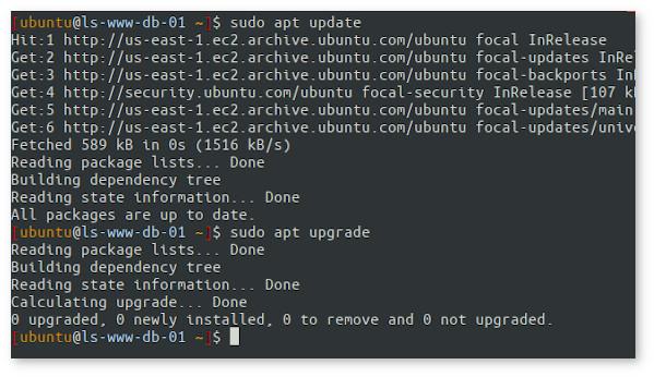 Installing Nginx with apt