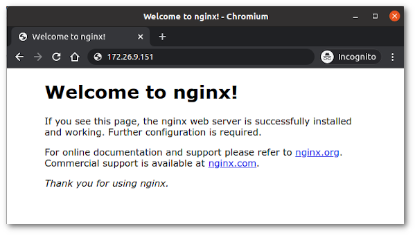 Verify and check your web server - welcome to nginx