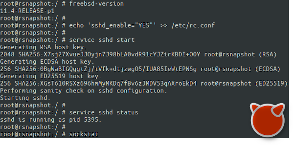 Enabling sshd on FreeBSD jail
