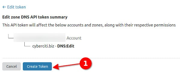Get DNS to issue a Lets Encrypt Wildcard SSL certificate with Acme.sh