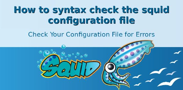 How to Squid test or check config file for syntax errors on Linux and Unix