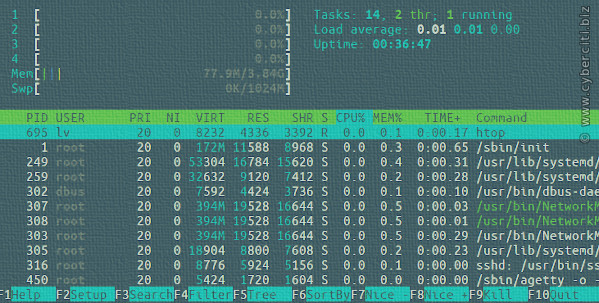 Running htop on Arch Linux server