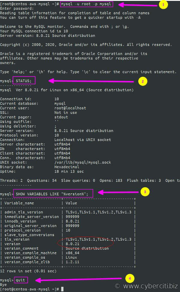 Testing MySQL on CentOS 8