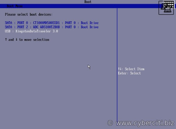 FreeBSD select the USB as boot device