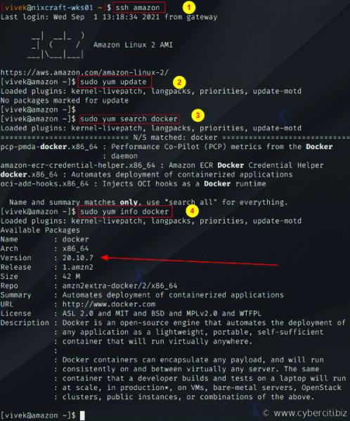 Buscar el paquete Docker en la AMI de Amazon Linux 2