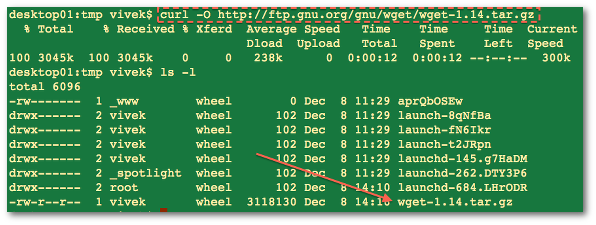 Fig.02: Downloading wget source code with the curl utility